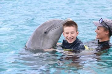 Dolfijnondersteunde therapie Kemen januari 2019